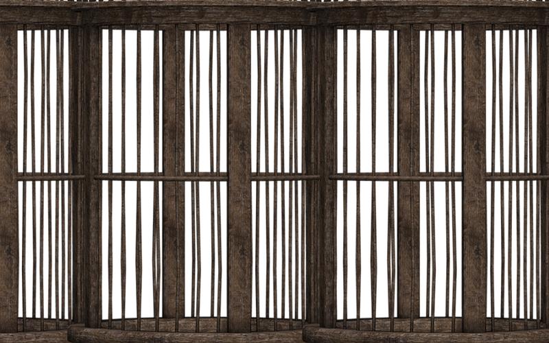 Imprisoned: the E-Slave